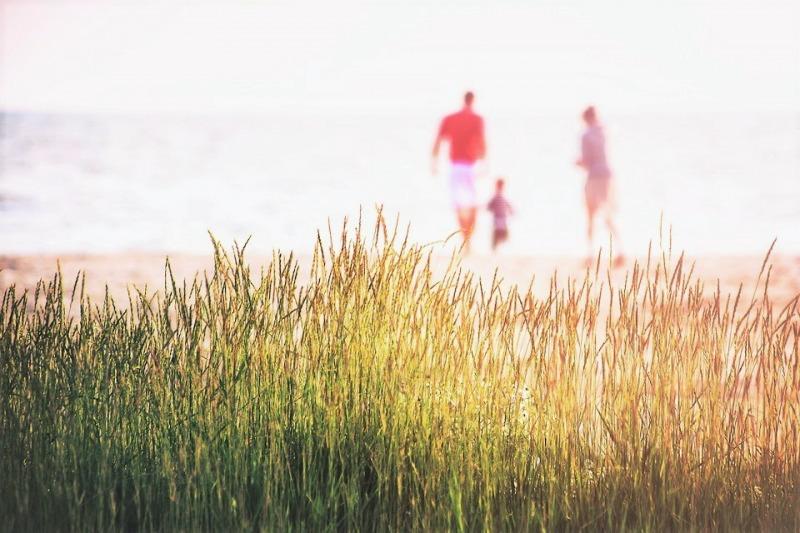 Assurance vie : Fiscalité et succession